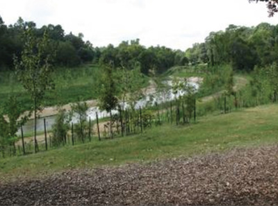 "A photo of Cypress Creek after ""restoration"" by the Harris County Flood Control District."