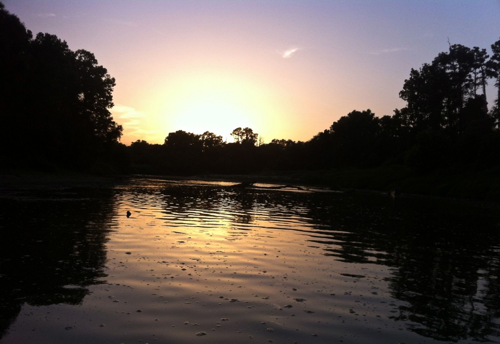 Sunset on the Spring Creek Greenway, August 2014.