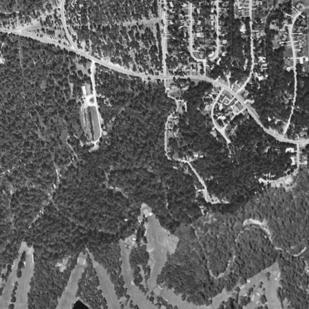 An aerial photo taken in 1953 of Buffalo Bayou and surrounding riparian forest in the project area.