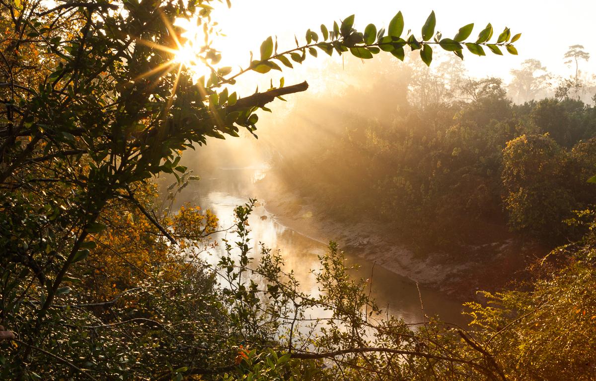 Environmental Photography That Works | Save Buffalo Bayou