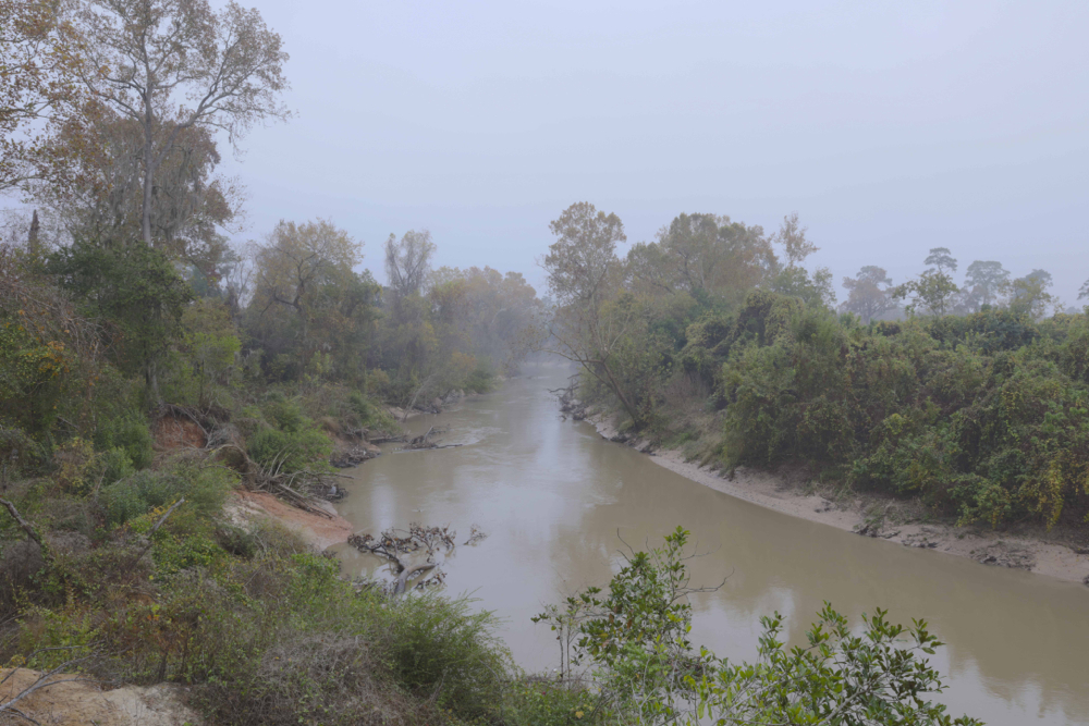 Foggy, warm winter morning on Buffalo Bayou at moderate flow, about 800 cubic feet per second. Photo by Jim Olive on Dec. 13, 2016.